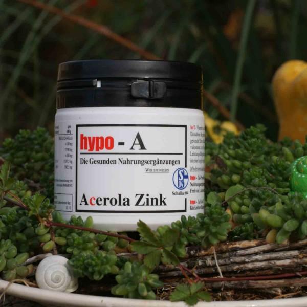 Acerola Zink 100 Kapseln