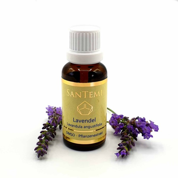 DMSO Pflanzenextrakt Lavendel - Lavandula angustifolia