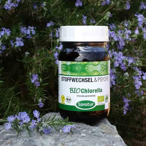 Bio - Chlorella pyrenoidosa 250 Tabletten