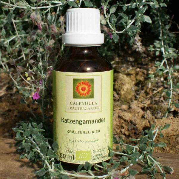 Katzengamander Teucrium marum Tinktur 50ml