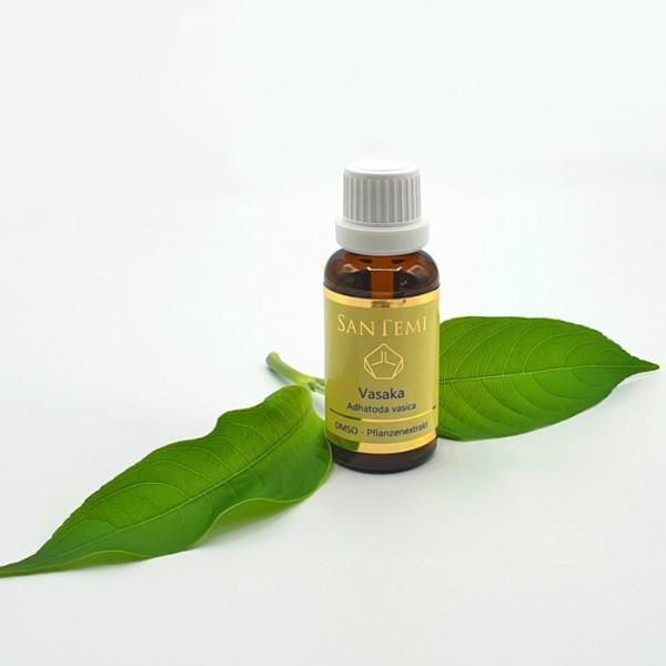 DMSO Pflanzenextrakt Vasaka - Adhatodea vasica