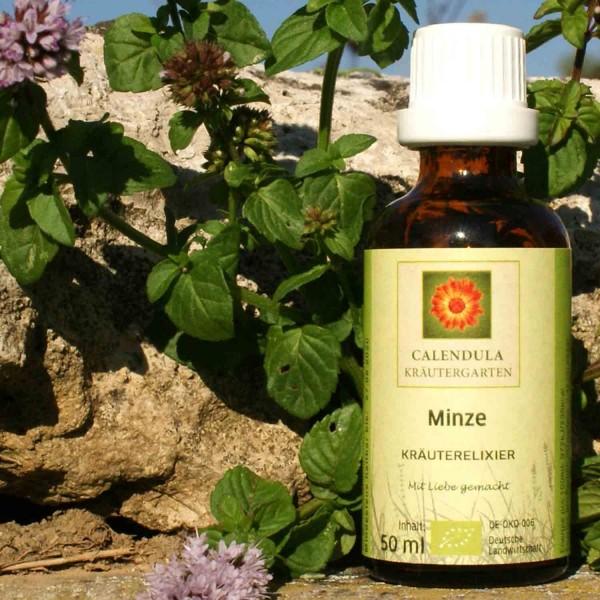 Minze Mischung Bio-Kräuterelixier Mentha