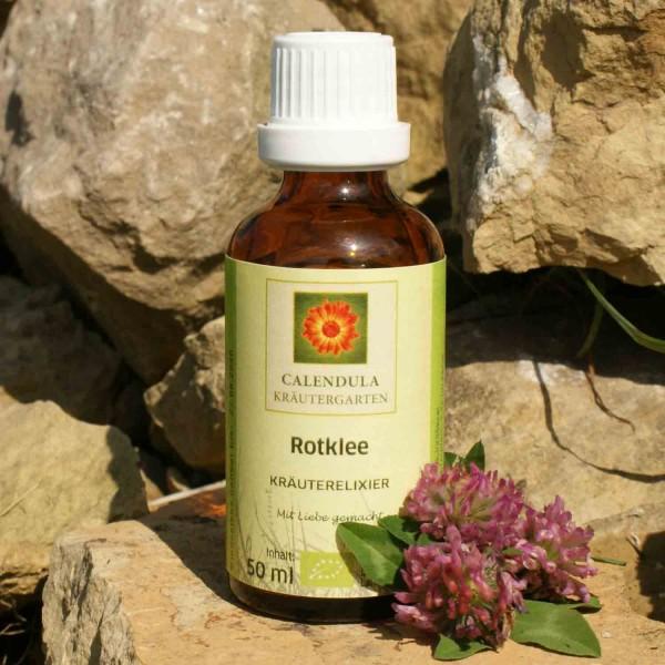 Rotklee Trifolium pratense Tinktur 50ml