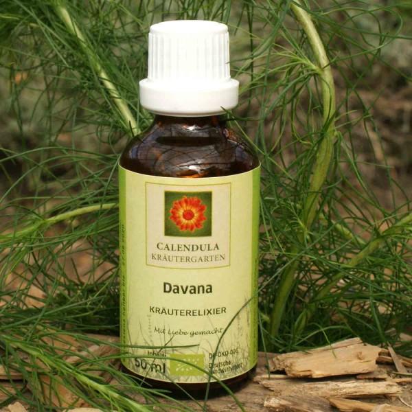 Davana Artemisia palens Tinktur 50ml
