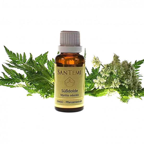 DMSO Pflanzenextrakt Süßdolde - Myrrhis odorata