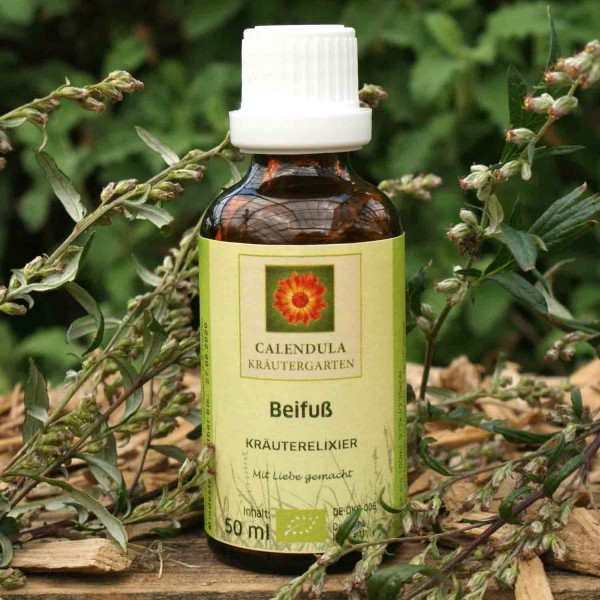 Beifuß-Artemisia-vulgaris-Tinktur