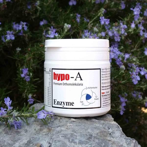 Enzyme 100 Kapseln
