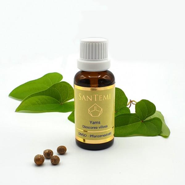 DMSO Pflanzenextrakt Yams - Dioscorea villosa