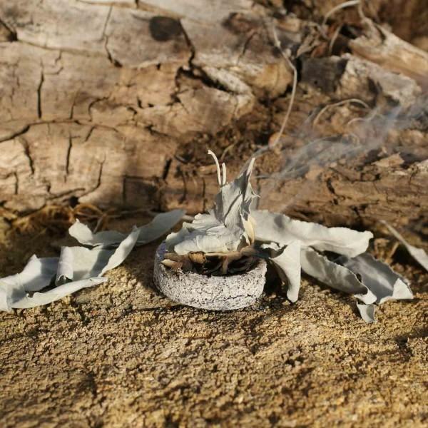 Weißer Salbei - Bio-Räuchersalbei (lose Blätter 20g)