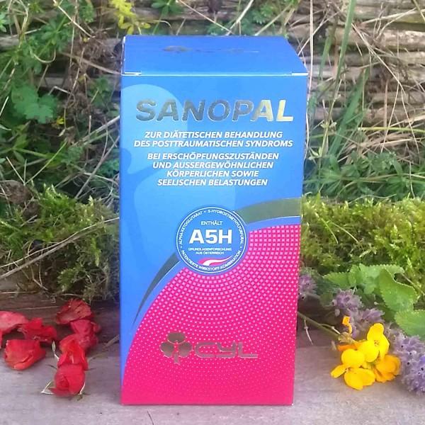Sanopal Trinklösungskonzentrat 1 VPE
