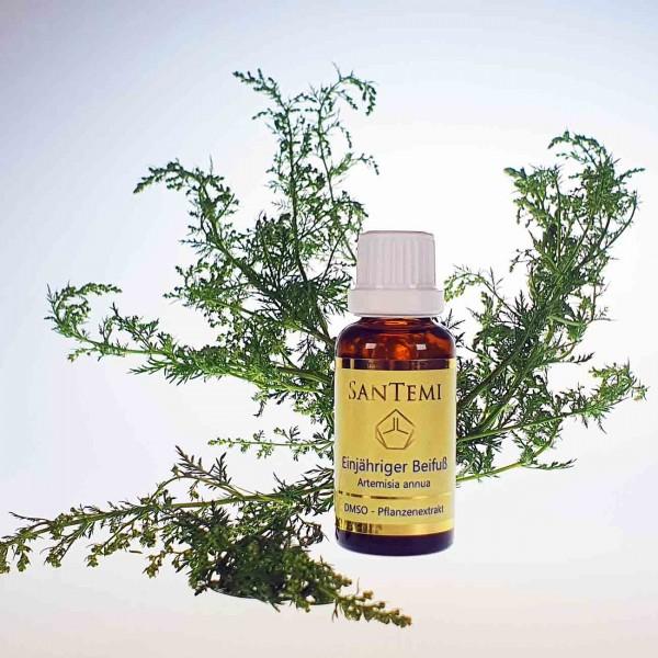 DMSO Pflanzenextrakt Einjähriger Beifuß - Artemisia annua
