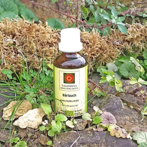 Tinktur-Bärlauch-Allium-ursinum