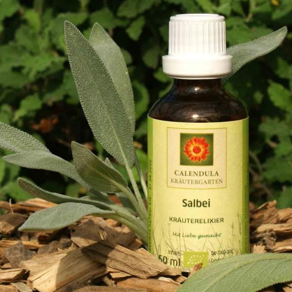 Echter Salbei Salvia officinalis Tinktur