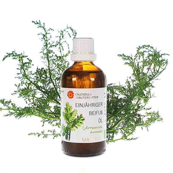Artemisia annua Öl Bio 100ml Bio Mazerat